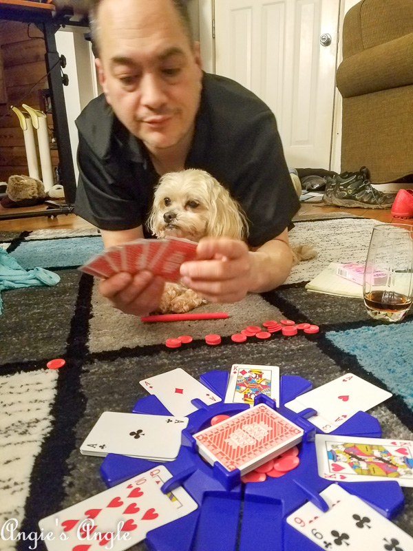 2019 Catch the Moment 365 Week 8 - Day 54 - Roxy Does Game Night