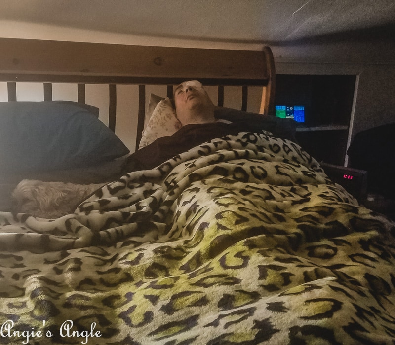 2019 Catch the Moment 365 Week 11 - Day 72 - Tucked In Finally