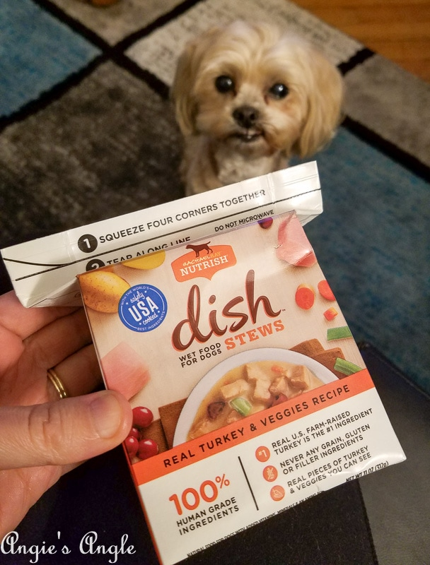 2019 Catch the Moment 365 Week 12 - Day 81 - Roxy Trying Out Rachael Ray Nutrish