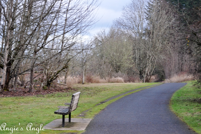 Salmon Creek Greenway Trail January-25
