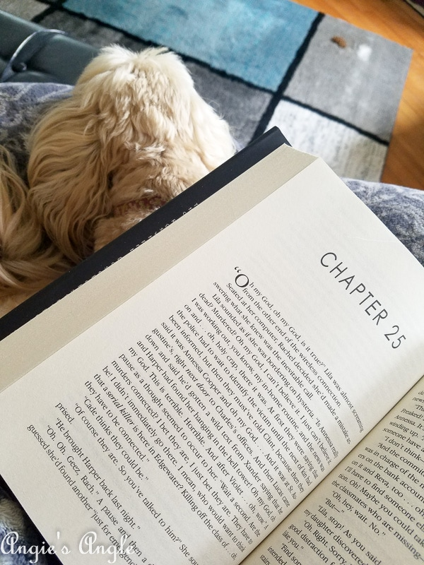 2019-Catch-the-Moment-365-Week-25-Day-174-Sunday-Morning-Cuddles-and-Reading