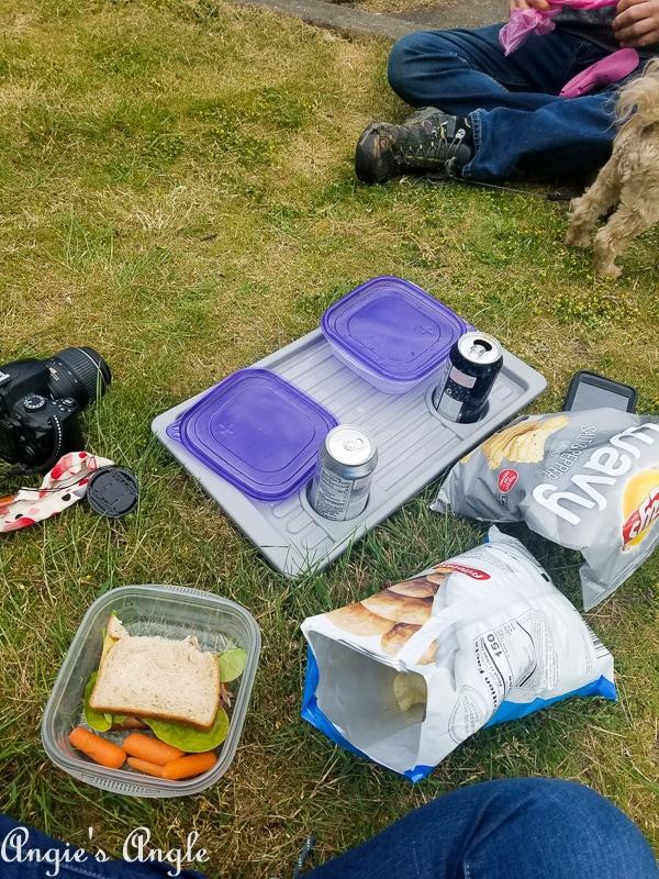 Leadbetter Point Park - picnic