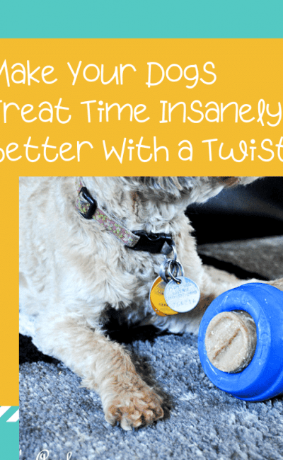 Make Your Dogs Treat Time Insanely Better With a Twist