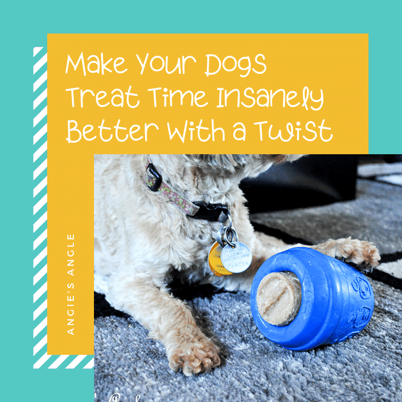 Dogs Treat Time - Social