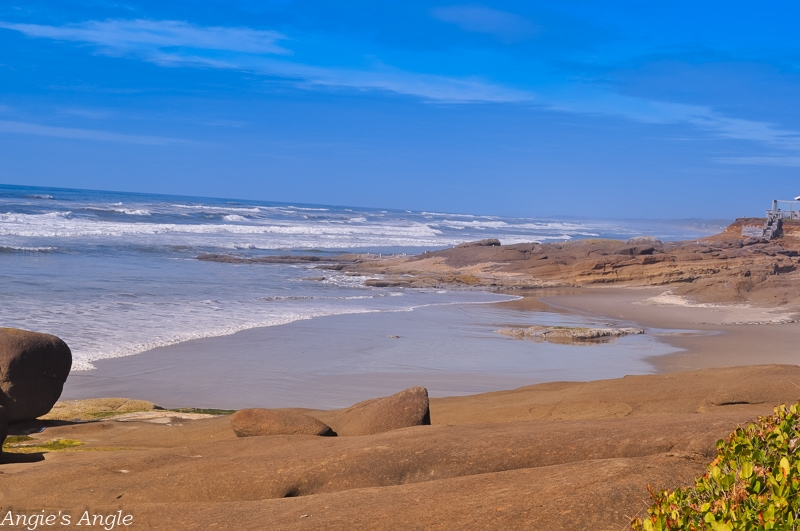 2019-Catch-the-Moment-365-Week-38-Day-266-Exploring-Yachats-Trail