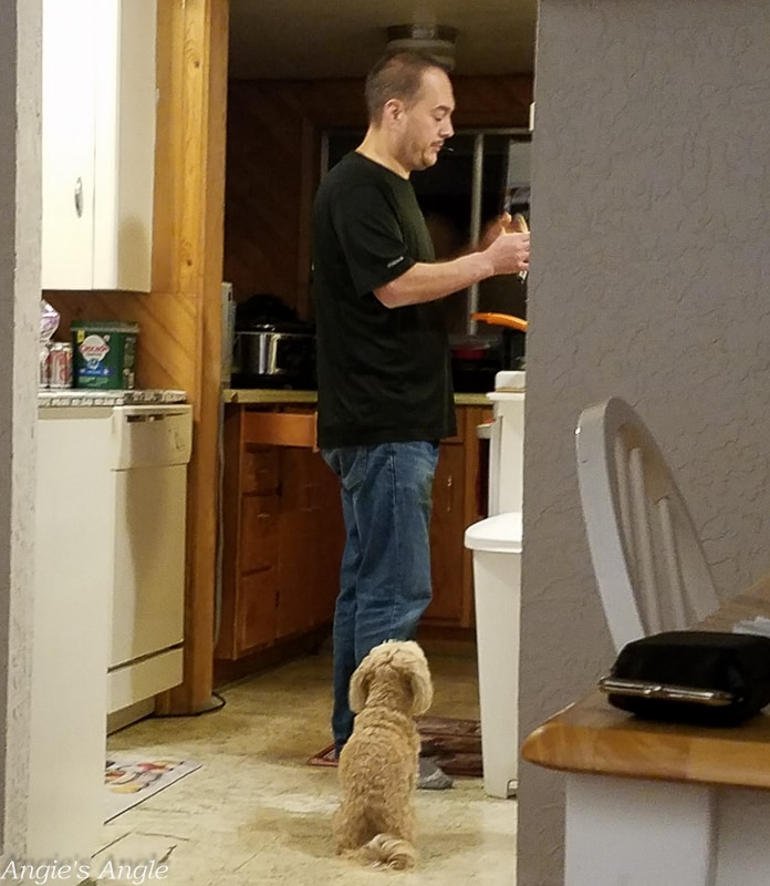 2019 Catch the Moment 365 Week 46 - Day 319 - Roxy Overseeing Daddy Cooking