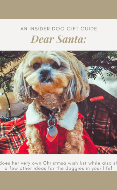 Roxy Christmas Wish List – This is an Insider Dog Gift Guide