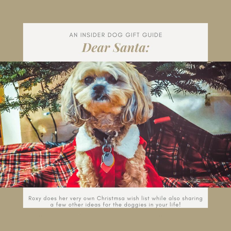 An-Insider-Dog-Gift-Guide-Social
