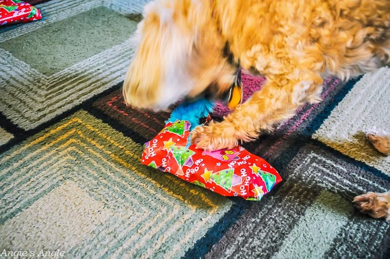 Roxy Unwrapping Christmas Gift