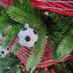 2019-Catch-the-Moment-365-Week-49-Day-338-Soccer-Tree