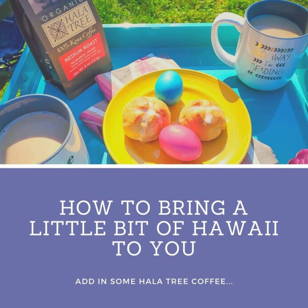 Hawaii to You - Social