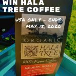 Win Hala Tree Coffee - Pin