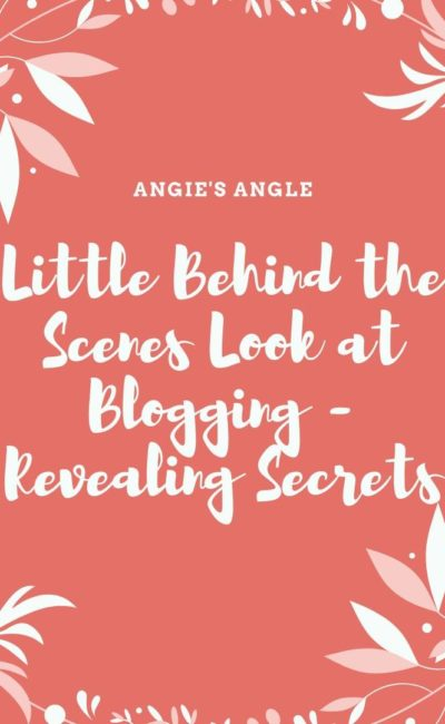 Little Behind the Scenes Look at Blogging – Revealing Secrets
