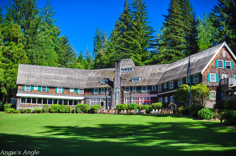 Camping at Willaby-Lake Quinault Lodge