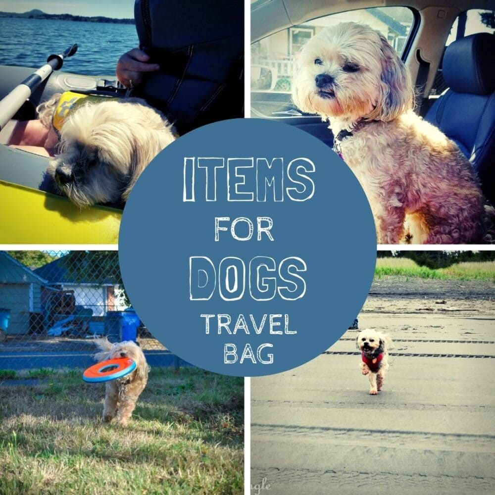 Dogs Travel Bag - Social