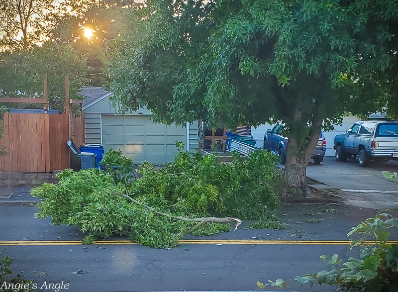 2020 Catch the Moment 366 Week 36 - Day 252 - Vancouver Washington Summer Wind Storm