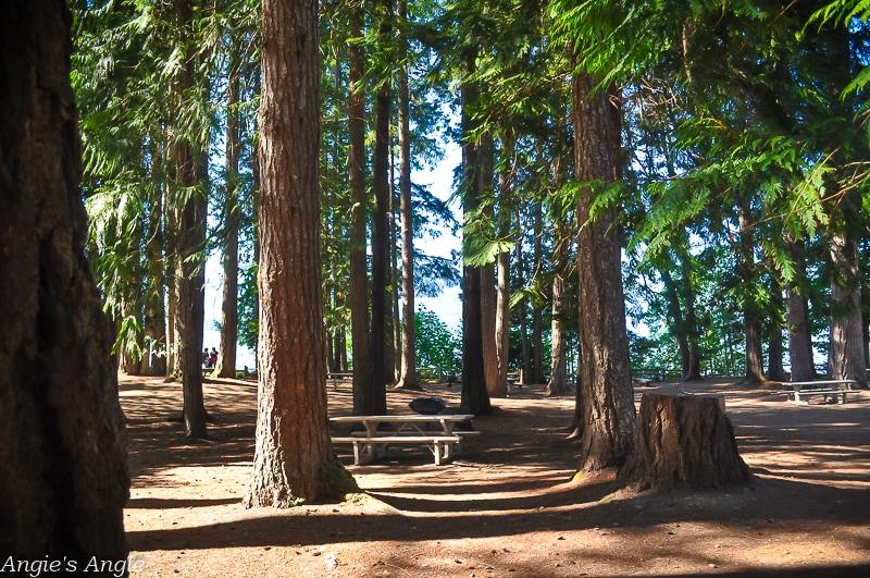 Scenic Beach Park Camping-78