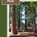 Scenic Beach Park Camping - Pin