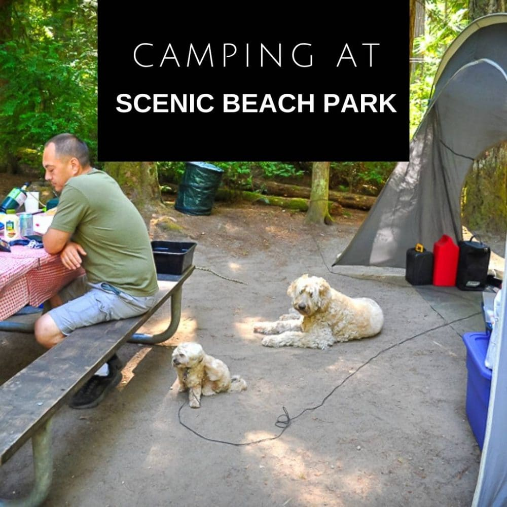Scenic Beach Park Camping - Social