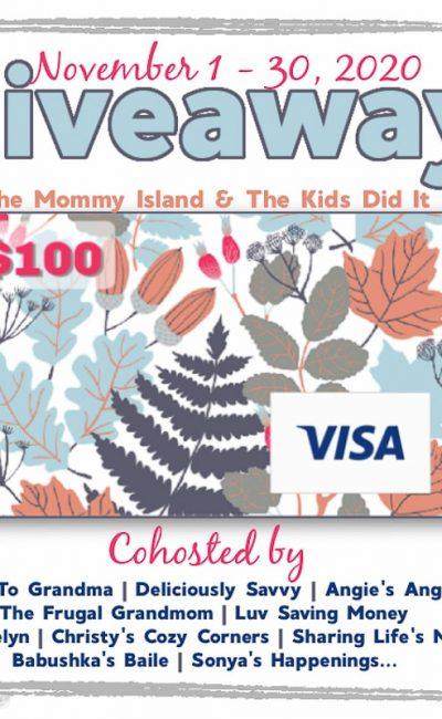 November $100 Visa Giveaway