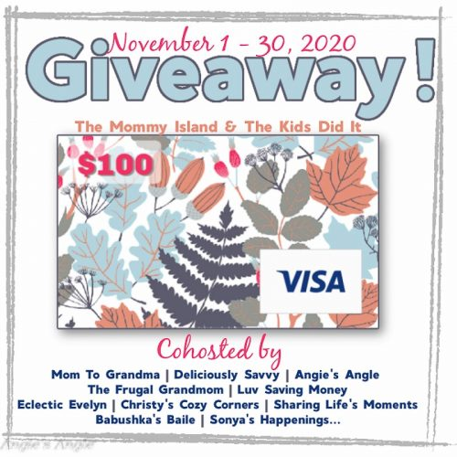 November $100 Visa Giveaway - Picture
