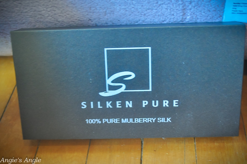 Silken Pure Silk Pillow Case
