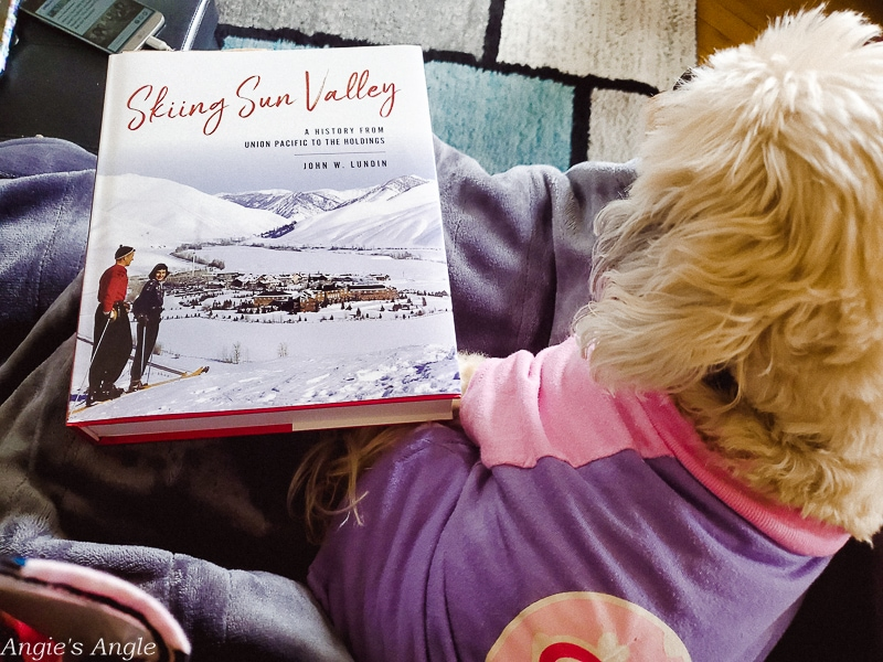 2020 Catch the Moment 366 Week 47 - Day 328 - New Book Morning with Skiing Sun Valley