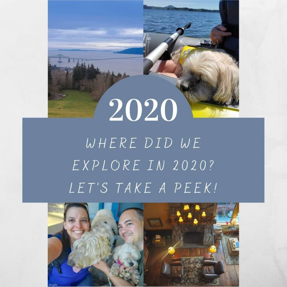 Where Did We Explore in 2020 - Social